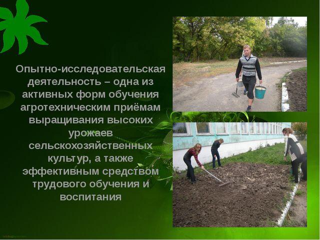 Опытно-исследовательская деятельность – одна из активных форм обучения агроте...