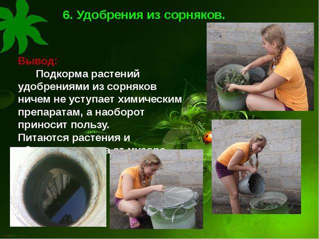 6. Удобрения из сорняков. Вывод: Подкорма растений удобрениями из сорняков ни...