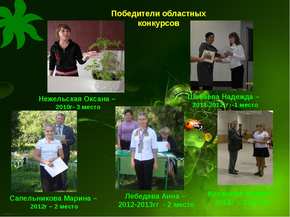Победители областных конкурсов. Нежельская Оксана – 2010г- 3 место Шабаева На...