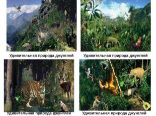 Удивительная природа джунглей Удивительная природа джунглей Удивительная при