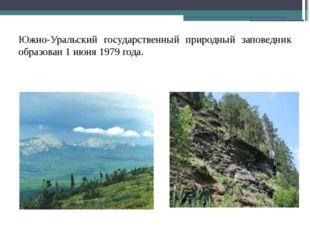 Южно-Уральский государственный природный заповедник образован 1 июня 1979 го