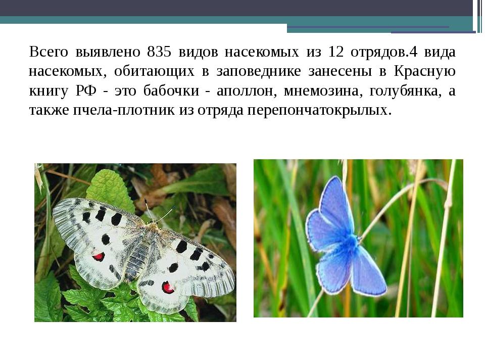 Всего выявлено 835 видов насекомых из 12 отрядов.4 вида насекомых, обитающих...
