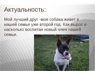 Актуальность: Мой лучший друг -моя собака живет в нашей семье уже второй год.