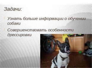Задачи: Узнать больше информации о обучении собаки Совершенствовать особеннос