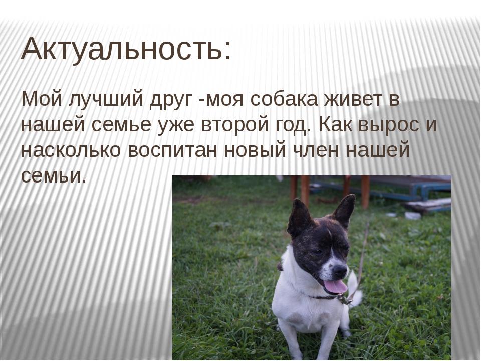 Актуальность: Мой лучший друг -моя собака живет в нашей семье уже второй год....