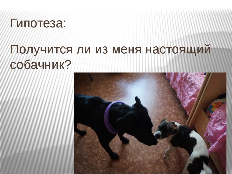 Гипотеза: Получится ли из меня настоящий собачник?