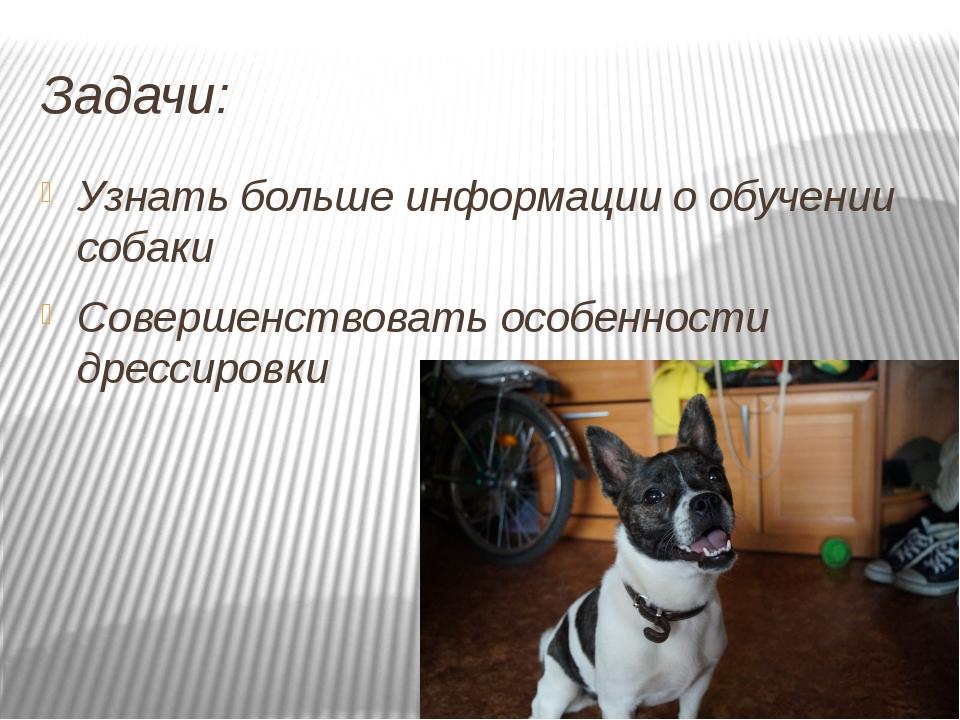 Задачи: Узнать больше информации о обучении собаки Совершенствовать особеннос...