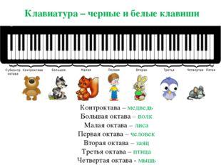 Клавиатура – черные и белые клавиши Контроктава – медведь Большая октава – во