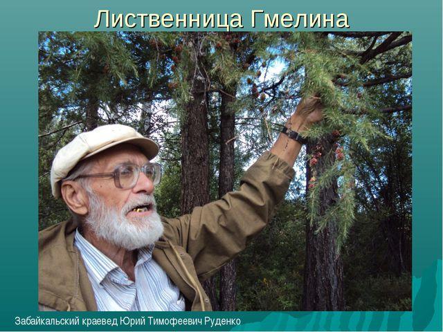 Лиственница Гмелина Забайкальский краевед Юрий Тимофеевич Руденко