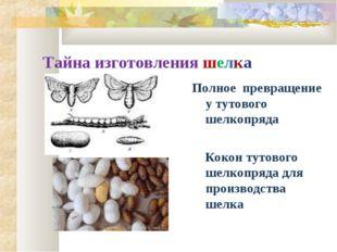 Тайна изготовления шелка Полное превращение у тутового шелкопряда Кокон тутов