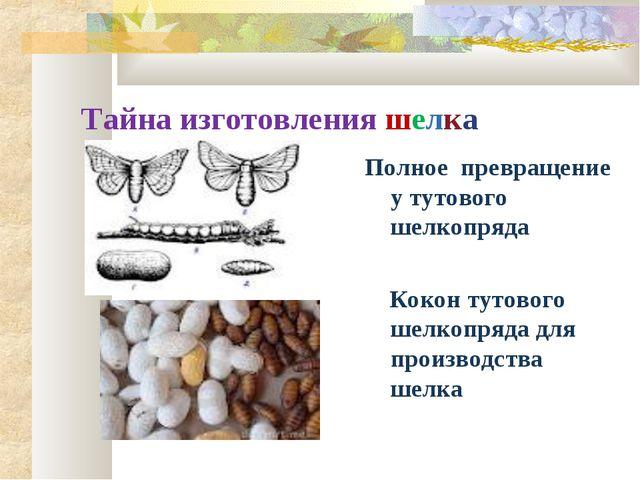 Тайна изготовления шелка Полное превращение у тутового шелкопряда Кокон тутов...