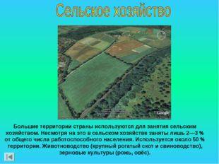 Большие территории страны используются для занятия сельским хозяйством. Несмо