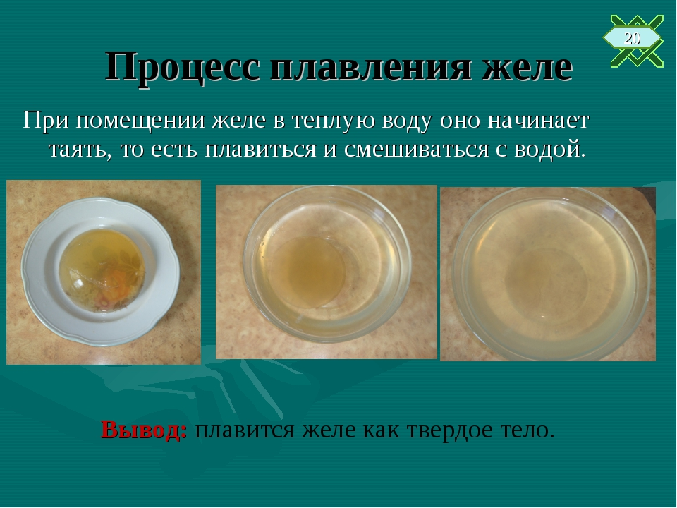 Процесс плавления желе При помещении желе в теплую воду оно начинает таять, т...