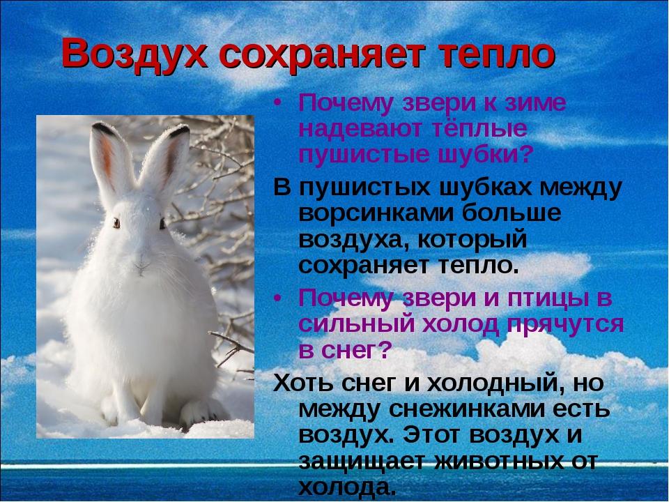 Воздух сохраняет тепло Почему звери к зиме надевают тёплые пушистые шубки? В...