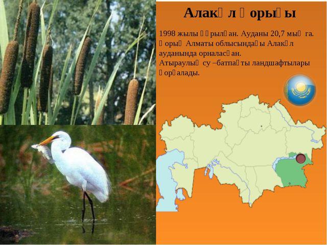 Алакөл қорығы 1998 жылы құрылған. Ауданы 20,7 мың га. Қорық Алматы облысындағ...