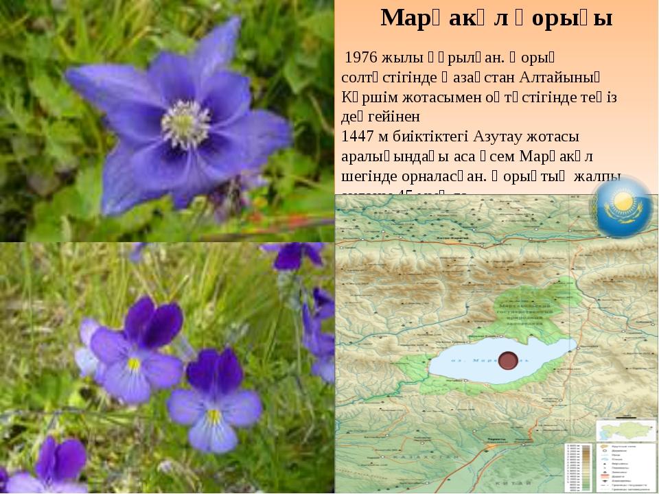 Марқакөл қорығы 1976 жылы құрылған. Қорық солтүстігінде Қазақстан Алтайының К...