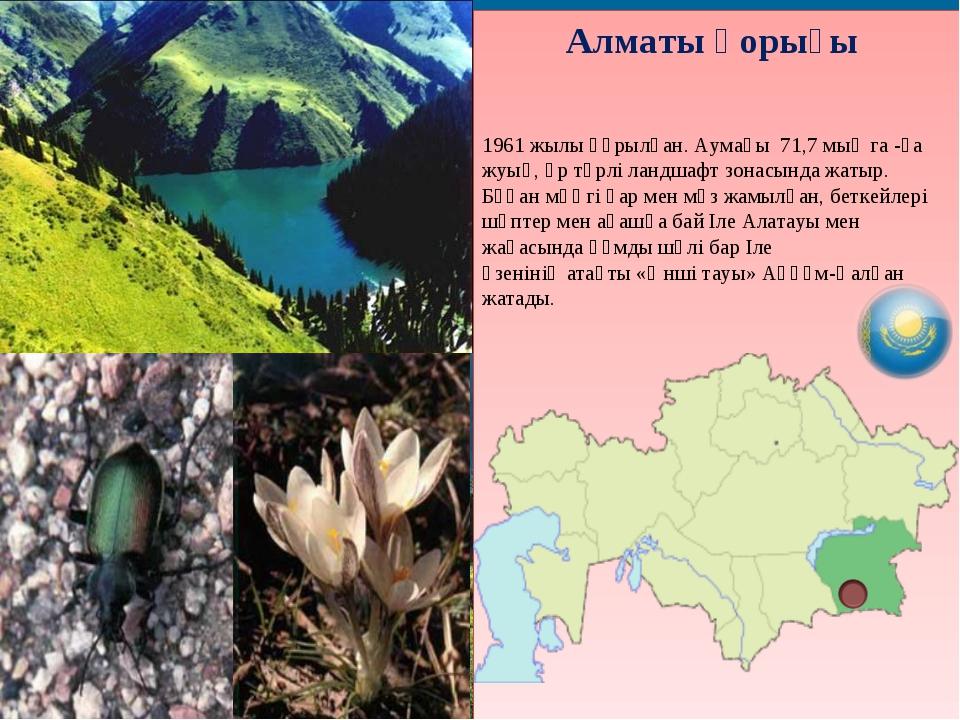 Алматы қорығы 1961 жылы құрылған. Аумағы 71,7 мың га -ға жуық, әр түрлі ландш...
