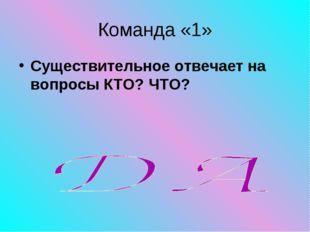 Команда «1» Существительное отвечает на вопросы КТО? ЧТО?