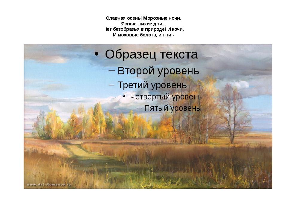 Славная осень! Морозные ночи, Ясные, тихие дни... Нет безобразья в природе!...