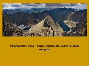 Уральские горы – гора Народная, высота 1895 метров.
