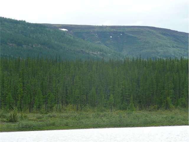 Среднесибирское плоскогорье. Плоскогорье – место с равнинной или холмистой по...