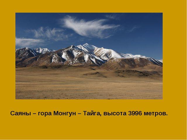 Саяны – гора Монгун – Тайга, высота 3996 метров.