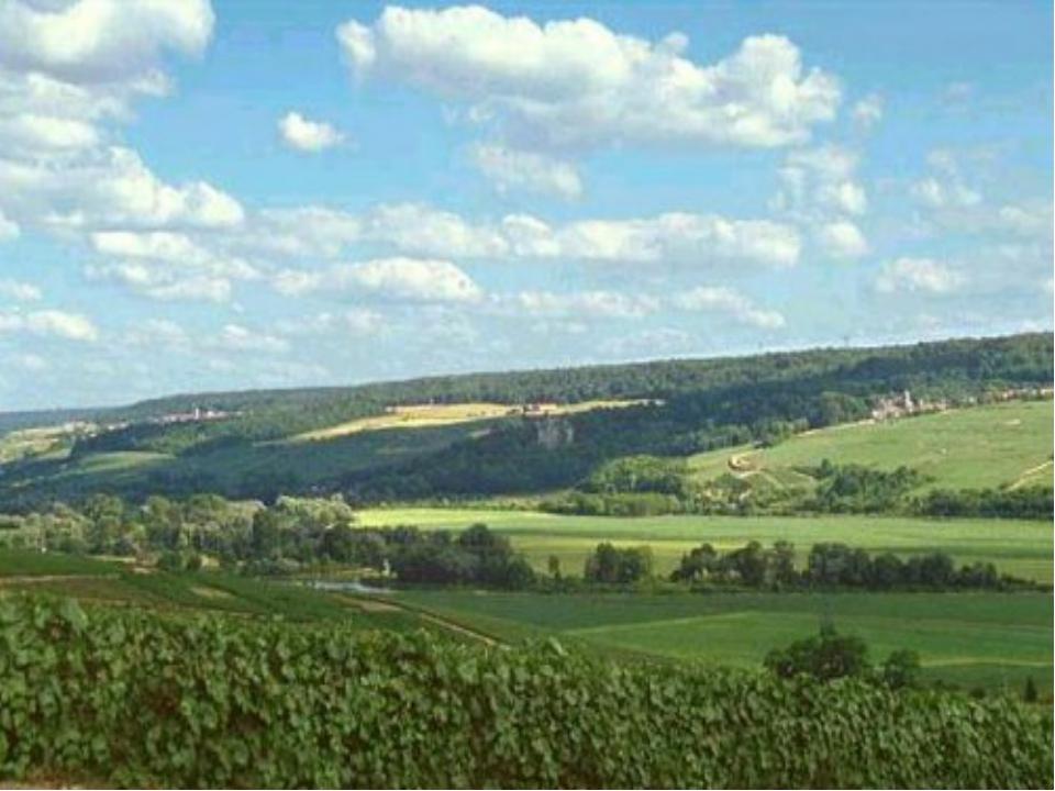 Восточно-Европейская равнина. Поверхность у этой равнины неровная, встречаютс...