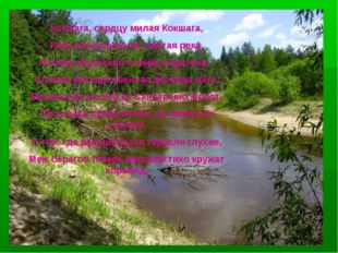 Кокшага, сердцу милая Кокшага, Река пленительная, чистая река, Петляя, медлен