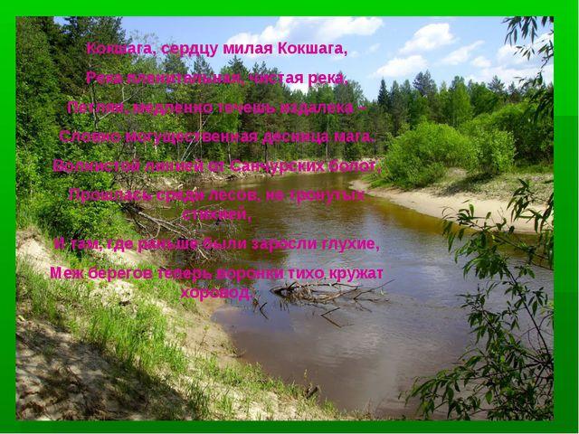 Кокшага, сердцу милая Кокшага, Река пленительная, чистая река, Петляя, медлен...