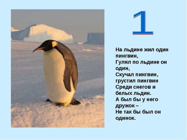На льдине жил один пингвин, Гулял по льдине он один, Скучал пингвин, грустил...