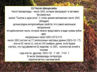 5.2 Число Шахиризады Число Шахиризады - число 1001, которое фигурирует в загл