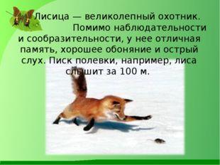 Лисица — великолепный охотник. Помимо наблюдательности и сообразительности,