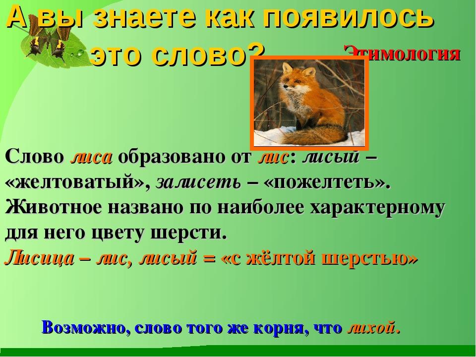 Слово лиса образовано от лис: лисый – «желтоватый», залисеть – «пожелтеть»....
