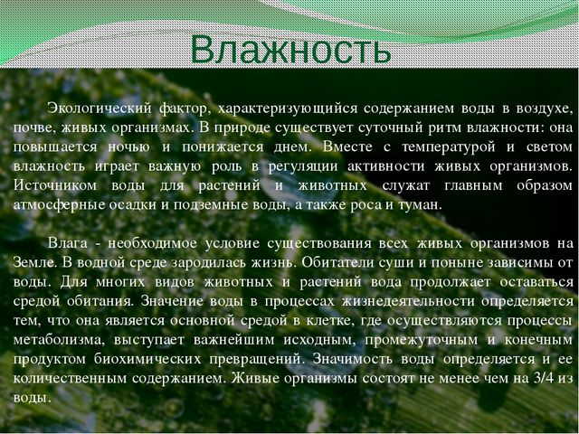 Влажность Экологический фактор, характеризующийся содержанием воды в воздухе,...