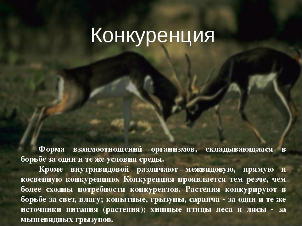 Форма взаимоотношений организмов, складывающаяся в борьбе за одни и те же усл...