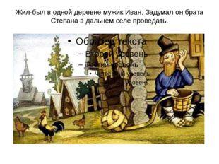 Жил-был в одной деревне мужик Иван. Задумал он брата Степана в дальнем селе п