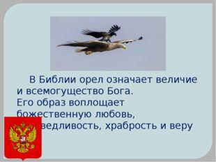В Библии орел означает величие и всемогущество Бога. Его образ воплощае