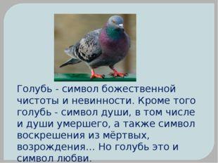 Голубь - символ божественной чистоты и невинности. Кроме того голубь - символ