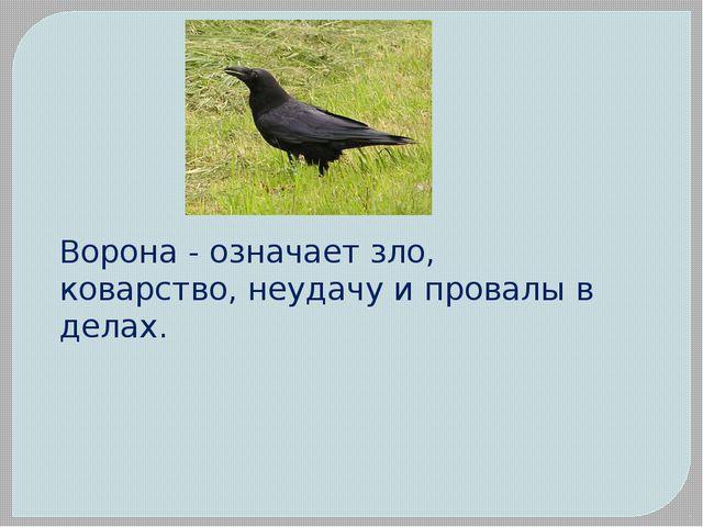 Ворона - означает зло, коварство, неудачу и провалы в делах.