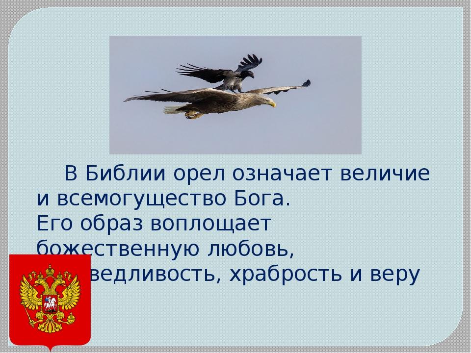 В Библии орел означает величие и всемогущество Бога. Его образ воплощае...