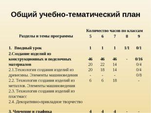 Общий учебно-тематический план Разделы и темы программыКоличество часов по к