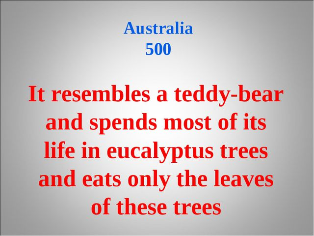 Australia 500 It resembles a teddy-bear and spends most of its life in eucal...