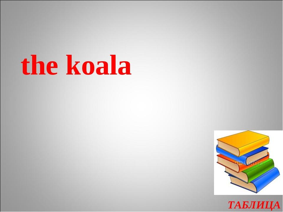 ТАБЛИЦА the koala