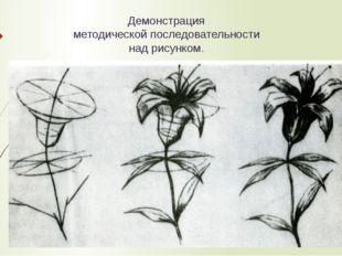 Демонстрация методической последовательности над рисунком.