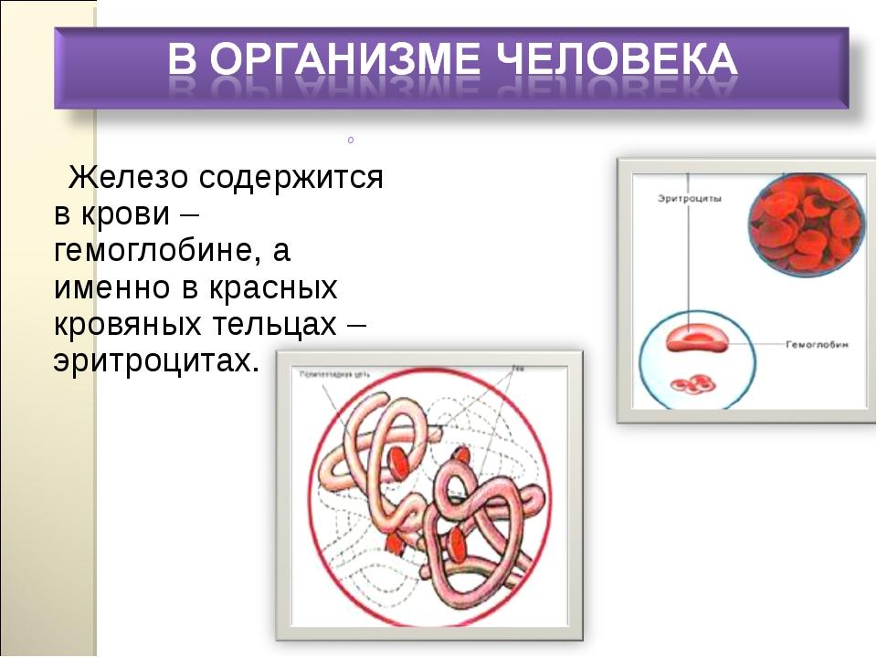 Железо содержится в крови – гемоглобине, а именно в красных кровяных тельцах...