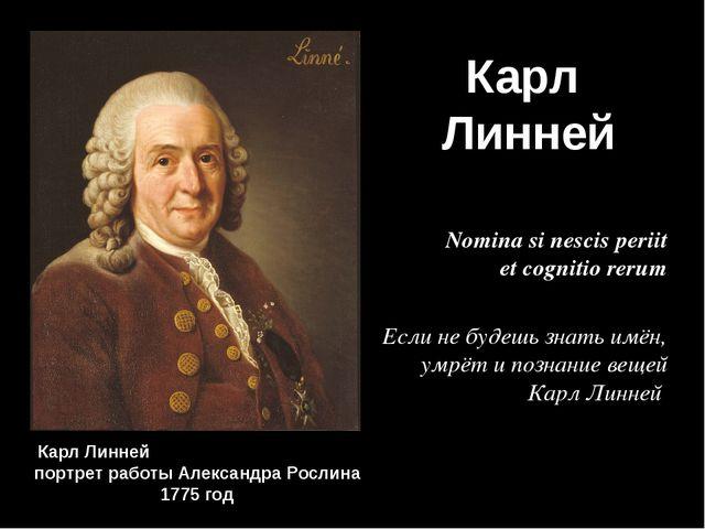 Карл Линней Карл Линней портрет работы Александра Рослина 1775 год Nomina si...