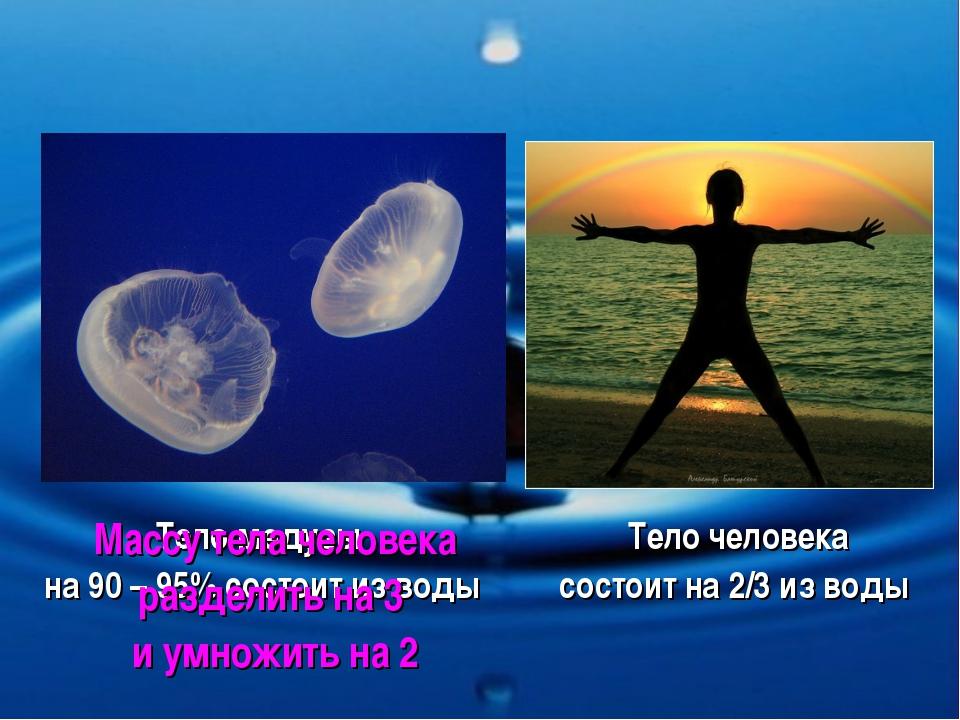 Тело медузы на 90 – 95% состоит из воды Тело человека состоит на 2/3 из воды...