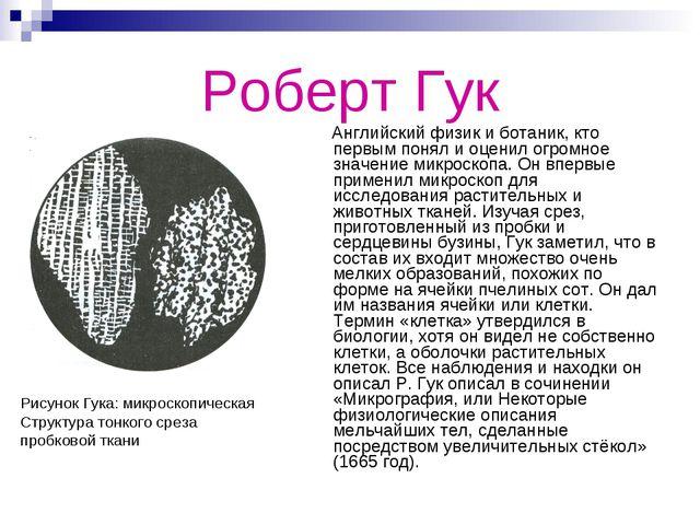 Роберт Гук Английский физик и ботаник, кто первым понял и оценил огромное зна...