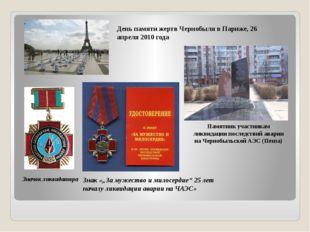 День памяти жертв Чернобыля в Париже, 26 апреля 2010 года Значок ликвидатора