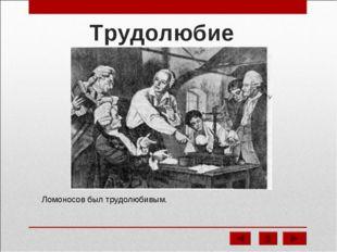 Трудолюбие Ломоносов был трудолюбивым.